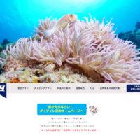 ダイブイン浜 – ケラマ諸島座間味島 民宿&ダイビングサービスのダイブイン浜